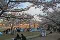 Himeji castle April 35.jpg