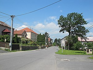 Hladké Životice - Road through the village