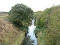 Holderness Drain - geograph.org.uk - 1527954.jpg