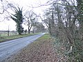 Holme Lane looking east - geograph.org.uk - 327490.jpg