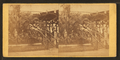 Horticultural department, by Newell, R., d. 1897.png