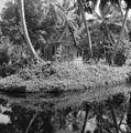 Huis tussen de bomen - 20651592 - RCE.jpg