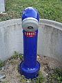 Hydrant bleu à la douane du Creux 18-08-2012.JPG
