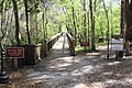 Ichetucknee Springs State Park Blue Hole Trail, Headspring trailheads.jpg