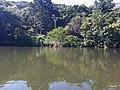 Iguape - SP - panoramio (278).jpg