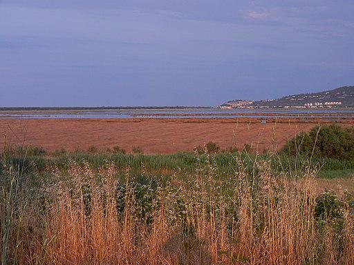 Il Padule dall'Isola Clodia - panoramio