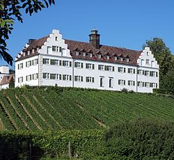 Manor house Hersberg, Immenstaad am Bodensee