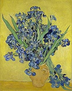 Irissen - s0050V1962 - Van Gogh Museum.jpg