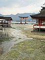 Itsukushima Shrine Torii seen from the east corridor at low tide (vertical) - spring 2019.jpg