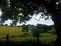 Itupeva - SP - panoramio (3011).jpg