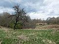 Izvalta parish, Latvia - panoramio - BirdsEyeLV (13).jpg
