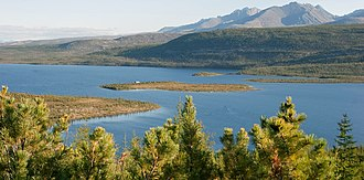 Taiga - Jack London Lake at Kolyma, Russia