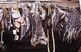 Jackal, porcupine, goose, eagle, amber hoopoe on spice and pottery stall. Kenitra (37047195834).jpg