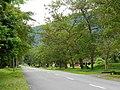 Jalan Padang Tembak (Rifle Range Rd) - panoramio.jpg