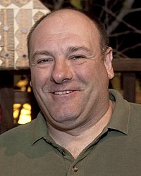 Actor James Gandolfini while on a USO tour