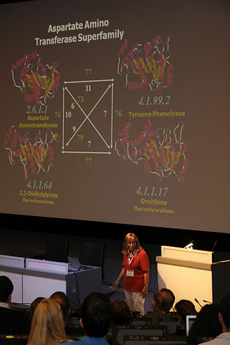 European Conference on Computational Biology - Janet Thornton at the UniProt symposium, a satellite event to ECCB 2012 in Basel, giving a talk on molecular evolution.