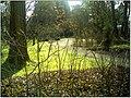 January Frost Botanic Garden Freiburg - Master Botany Photography 2014 - panoramio (28).jpg