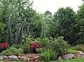 Jardin Mariposas Grado.jpg