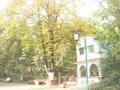 Jardin Miliana.png