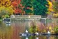 Jesienny Park Poludniowy.jpg