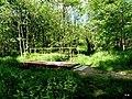 Jezioro Sępoleńskie mostek na dopływie strumyka. - panoramio.jpg