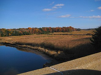 Tyranny of small decisions - As a result of many small decisions, and without the issue being directly addressed, nearly half the marshlands were destroyed along the coasts of Connecticut and Massachusetts.