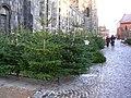 Julgransförsäljning utanför Lunds domkyrka.jpg
