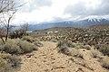 Jumbo Grade Trail - panoramio (78).jpg