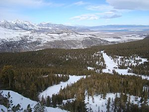 June Mountain ski area - Looking down upon June from the top