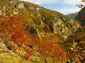 Kanjon Mileševke.jpg