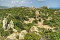 Khu bảo tồn núi chúa vùng bán khô hạn - panoramio (20).jpg