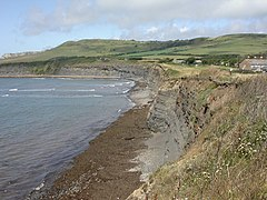 Kimmeridge Bay, cliff - geograph.org.uk - 1411669.jpg