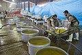 Kitchens in Iran آشپزخانه ها و ایستگاه های صلواتی در شهر مهران در ایام اربعین 110.jpg