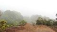 Kokee Park - Pihea Lookout, Pihea Trail, Hanapepe (502976) (16971537432).jpg