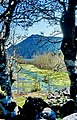 Kovada 18 05 1997 Kovada Gölü Seeblick 1.jpg