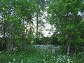 Kullamäe talu kalmistu 01.JPG