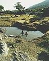 Kumbalgarh fort photoshoot 20.jpg