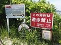 Kuroshima Nakamoto No swimming.jpg