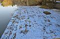 Kurpark Oberlaa 56 - damaged blue mosaic.jpg