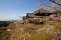 Kyoto, 桜, sakura, Kiyomizu-dera - panoramio.jpg