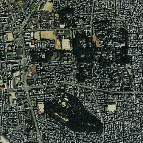 船岡山と大徳寺と今宮神社