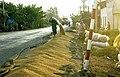LPCC-762-Fent assecar l'arròs a la carretera.jpg