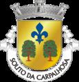 LRA-soutocarpalhosa.png