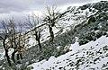 La Puebla de la Sierra 1975 04.jpg