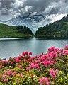Lago di Campo a primavera.jpg