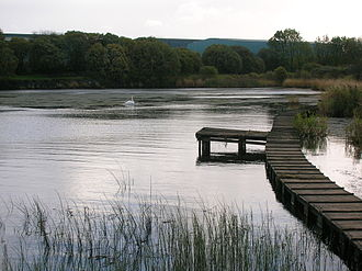 Kilbirnie Loch - A view at the south end of the loch
