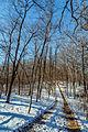 Lake Maria State Park in Winter, Monticello, Minnesota (23811966039).jpg