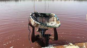 Lake Retba - Worker harvesting salt from the lake.