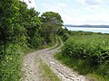 Lane, Figart Point - geograph.org.uk - 1359799.jpg