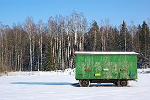 Latvian beehive trailer II.jpg